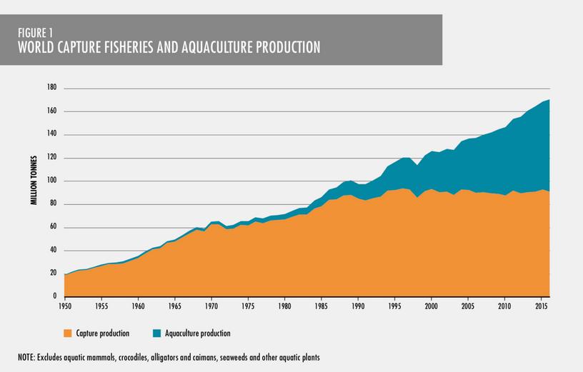 Graph of World Capture Fisheriesand Aquaculture Production